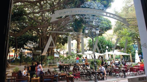 Plaza Canalla 4