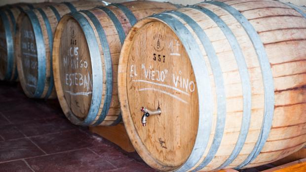 Bodegas Faelo de Elche, viticultura seleccionada
