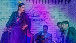 <p>La Guitarrería, espectacular tablao flamenco en el centro de Alicante. Disfruta de la pasión, la fuerza y la garra del tablao de Félix Amador y Maima Gea</p>
