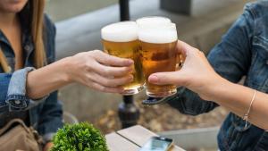 <p>Lazona Social Bar de Alicante es un bar de reunión perfecto en el centro de Alicante, con una acogedora terracita y una oferta gastronómica actual</p>