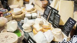 <p>Prueba la gran variedad de quesos en quesería La Trampa del Ratón, en pleno centro de Alicante. También con una selección de vinos y cervezas artesanales. </p>