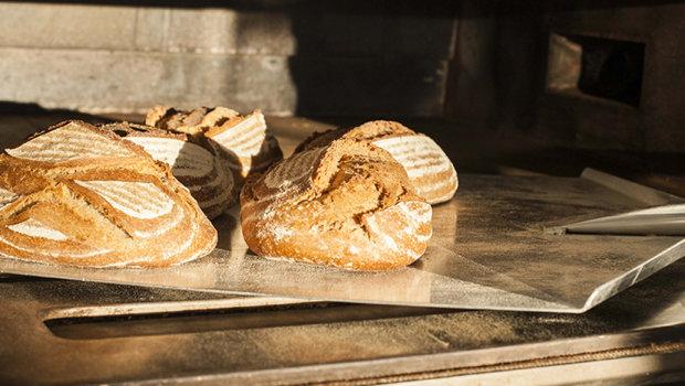 Cocopan, panes ecológicos elaborados con masa madre en San Juan